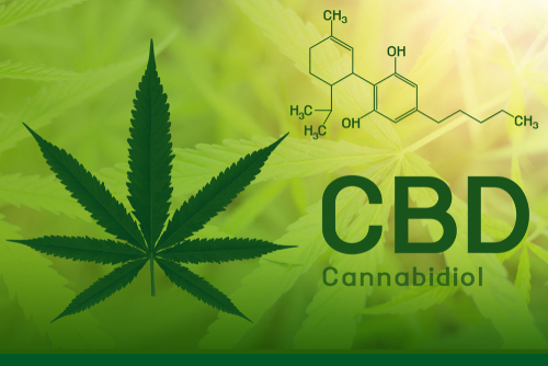 blogcertified-Sell-More-CBD-Oil-Online-with-a-Secure-Merchant-Account