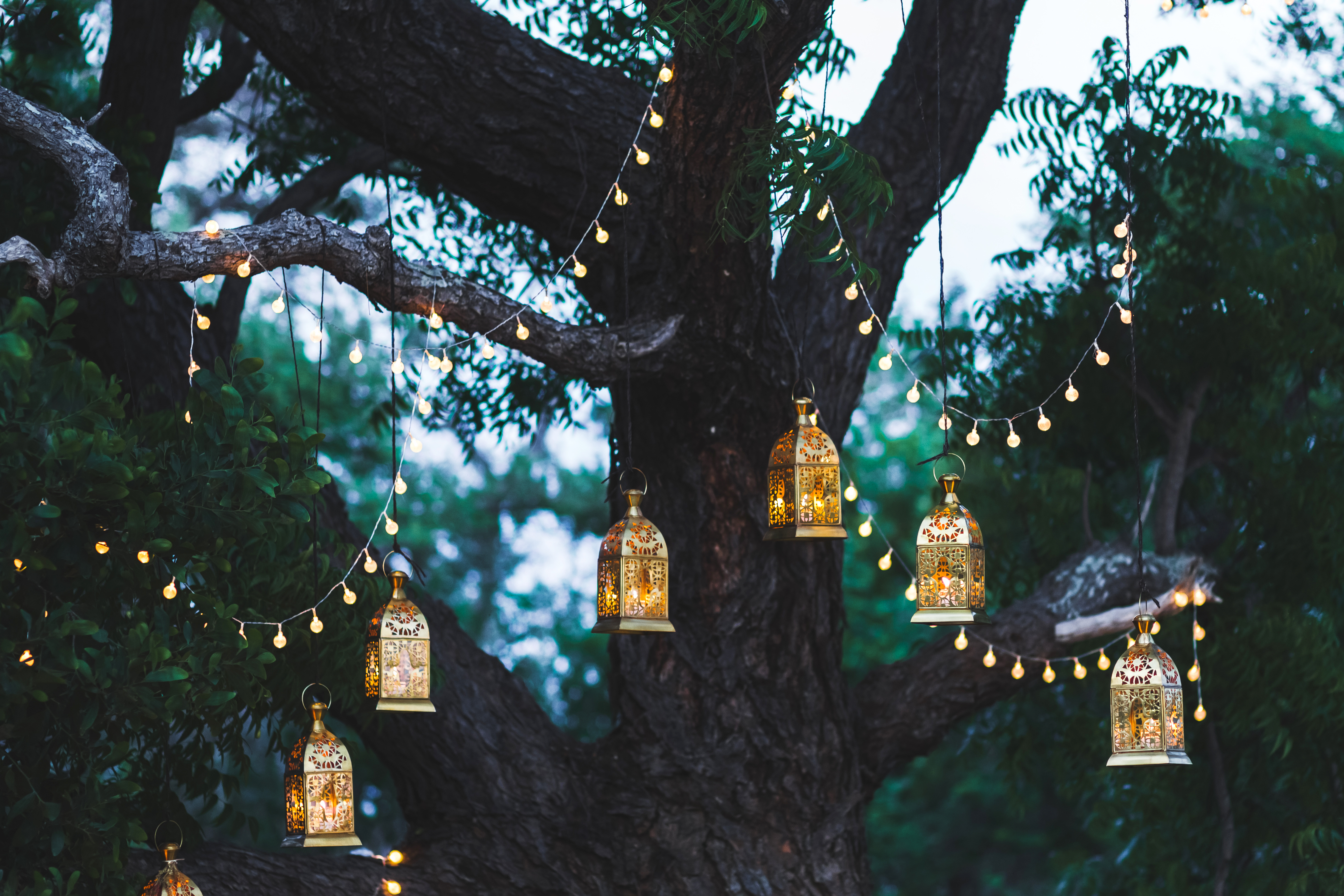 light-up-your-garden-haultail-diy