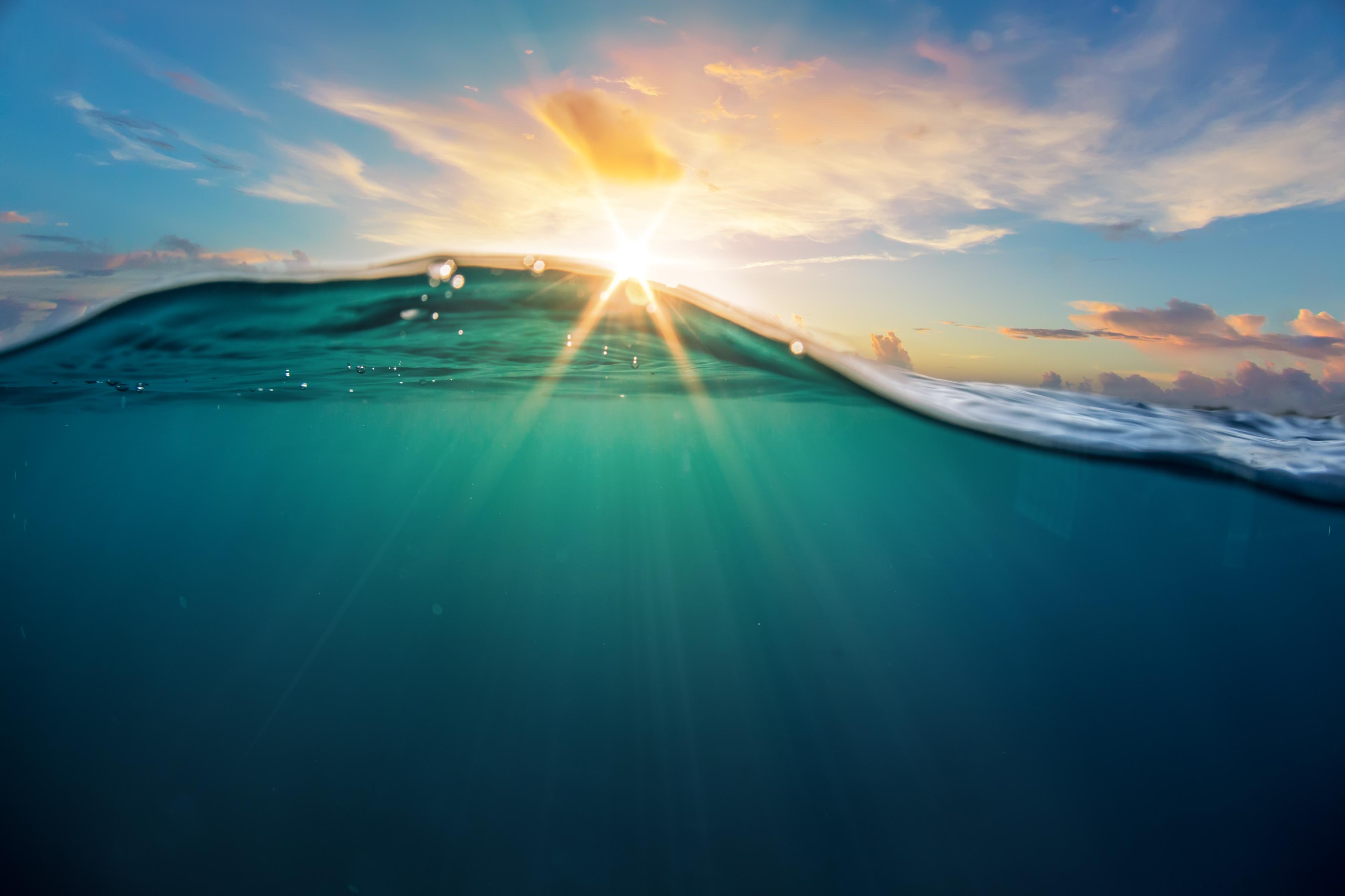 ocean-clean-up-haultail